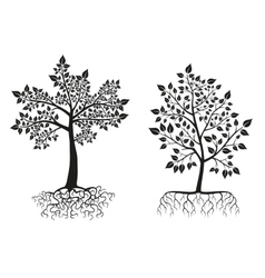 Black trees and roots silhouettes with leaves vector