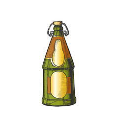 drawn blank beer bottle with bar stopper color vector image