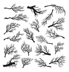 dry tree branches set environment dead and old vector image