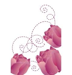 purple tulips vector image