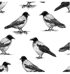 seamless pattern crows sketches vector image