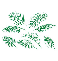 set of green isolated palm leaves vector image