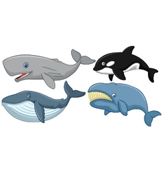Cartoon whale collection vector image vector image