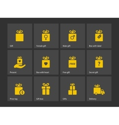 Set of gift box symbols vector image