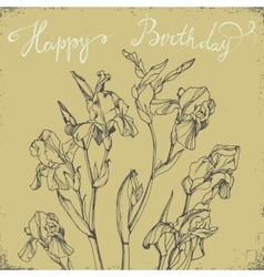 Happy Birthday Card with bunch of irises vector image vector image