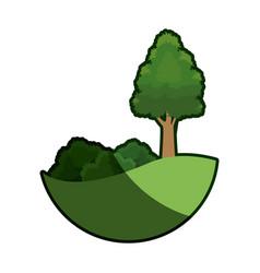 cartoon tree bush natural meadow image shadow vector image