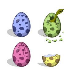 dinosaur eggs in cartoon style isolated image vector image