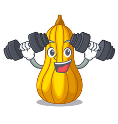 Fitness squash slices in a cartoon bowl vector