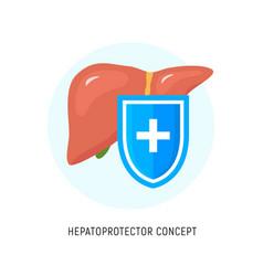 hepatoprotector concept icon healthy liver flat vector image