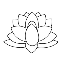 Indian lotus flower vector