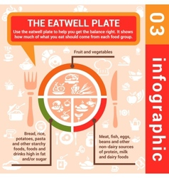 Infographic concept eatwell plate vector
