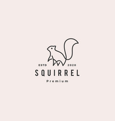 squirrel logo hipster vintage retro icon vector image