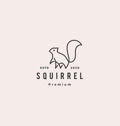 squirrel logo hipster vintage retro icon vector image