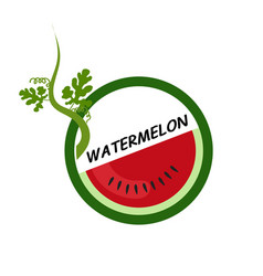 Watermelon fruit icons flat style vector