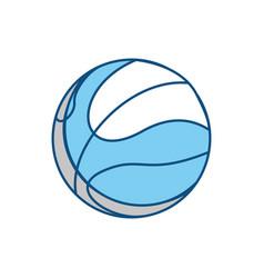Sport basketball ball vector
