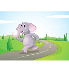 An elephant running at the road vector image vector image