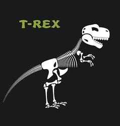 Skeleton tyrannosaurus Rex Bones and skull of vector image