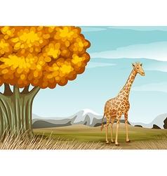 A giraffe near big tree vector