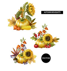 Bouquets of autumn leaves fruits vector