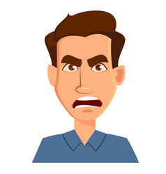 Face expression of a man - anger male emotions vector