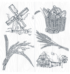 Hand drawn bakery set windmill wheat farm vector
