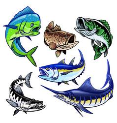 set gamefish bundle collection vector image