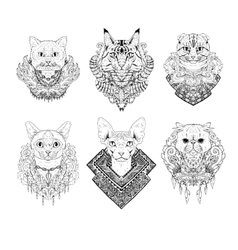 Hand drawn cat faces vector image vector image