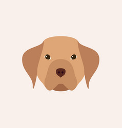 head dog simple pet vector image