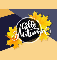 Banner with hand lettering label - hello vector