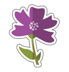 Cartoon periwinkle flower decoration image vector