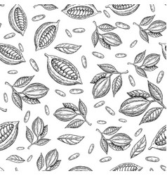 Cocoa branch seamless pattern superfood vector
