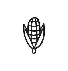Corn sketch icon vector