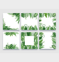 exotic leaves frame tropical leaf border nature vector image