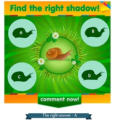 Find right shadow snail vector