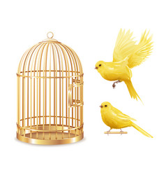 Golden canary cage set vector