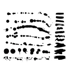 set ink splashes blots splatter vector image