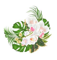 bouquet with tropical flowers floral arrangement vector image