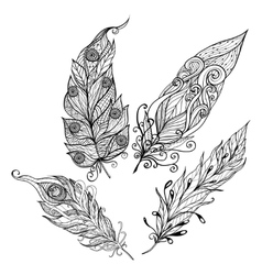 Feather Doodle Set vector image vector image