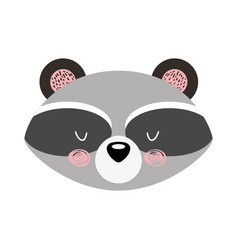 animal raccoon cartoon vector image