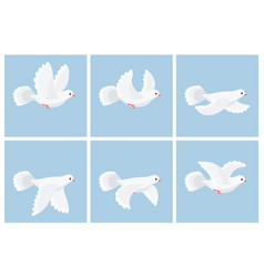 cartoon flying dove animation sprite vector image