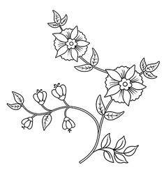 Decor floral black outline elements set vector