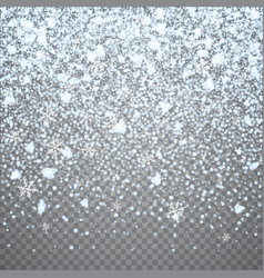 isolated christmas falling snow overlay vector image