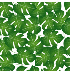 pattern of palm leaves vector image