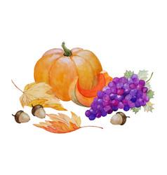 Pumpkin and grape autumn composition vector