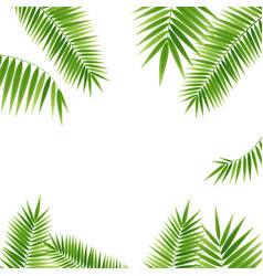 Realistic 3d detailed green palm leaf frame vector