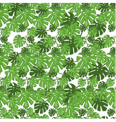 Seamless pattern jungle leaves tropical summer vector