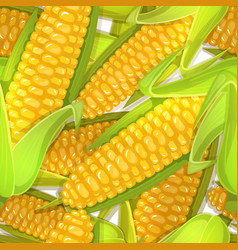 Seamless pattern of corncobs vector