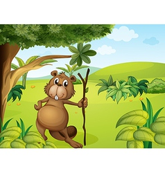 A beaver in the hills vector