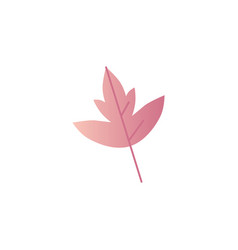 autumn leaf - fall tree vector image