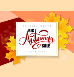 Autumn sale banner with hand lettering vector